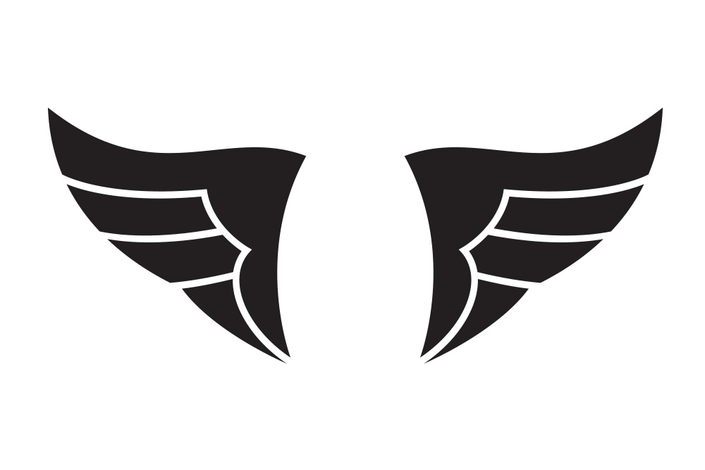 black and white wings illustration