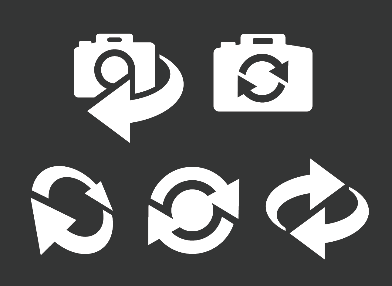 vector camera switch icons