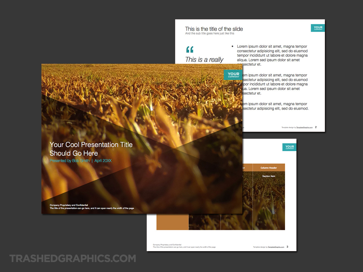 Beautiful nature PowerPoint template dry grass